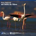 Opuscle-del-Parc-del-Delta-de-lEbre-150x150
